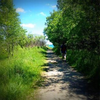 walk 1blog